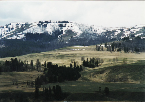 lamar valley, may