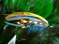 Classic Style Salmon Fly(McPhail) (dvd_mcphl) Tags: classic freestyle salmon flies