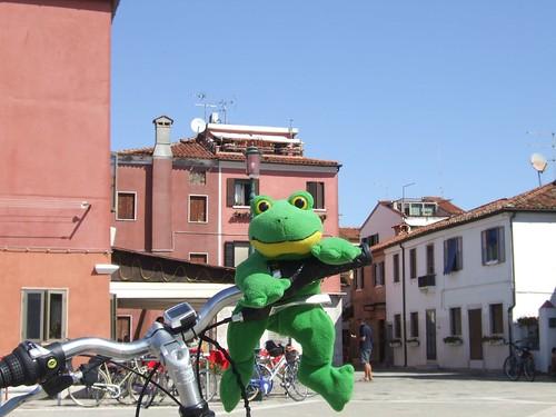 Il rospo sa guidare la bici!!