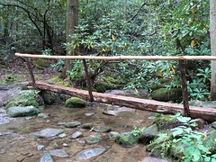 Small log bridge (Missy Gulley) Tags: mountains nature water creek waterfall stream hiking greatsmokymountains greenbrier porterscreek porterscreektrail fernbranchfalls
