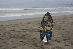 _MG_9835 (RP Mitch) Tags: beach skimboarding skimboard