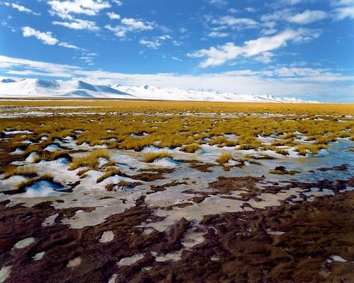 tibetanway_02