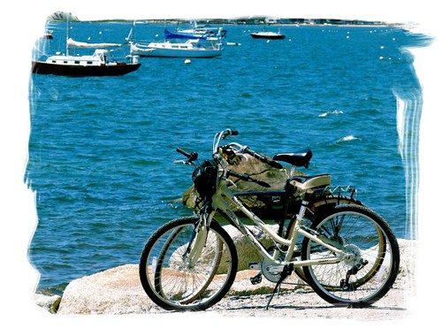 BICYCLE ROMANCE
