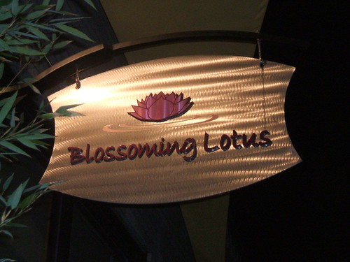 Blossoming Lotus!