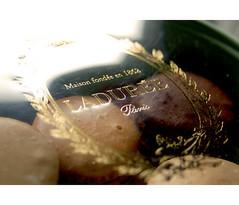 Ladure Macarons () Tags: food paris france yummy tea nikond50 laduree macarons ladure