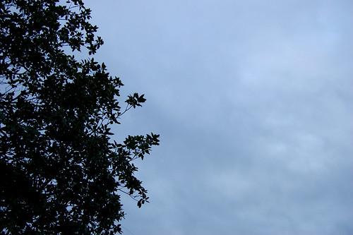 RainyMorning1