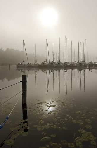 G_Lulich[1].Suecia