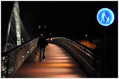DSC_2764 (bmielec) Tags: footbridge poland polska krakw cracow d90 krakoff kadka bernatka