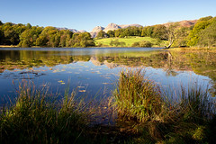 loughrigg tarn (Dennis_F) Tags: uk blue autumn trees england sky lake reflection green fall water colors zeiss landscape mirror see reflex wasser unitedkingdom district sony united herbst wide lakedistrict himmel kingdom fullframe dslr polarizer tarn landschaft bume lakeland ultra spiegelung ssm thelakes langdale farben 1635 uwa thelakedistrict weitwinkel polfilter loughrigg ultrawideangle langdalepikes uww herbstlich a850 loughriggtarn 163528 sonyalpha sonydslr vollformat zeiss1635 sal1635z cz1635 sony1635 dslra850 sonya850 sonyalpha850 alpha850 sonycz1635
