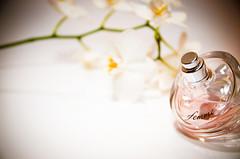 charming fragrance (lemographer) Tags: orchid perfume femme orchidee projekt fragrance hugoboss duft parfum favorit3 produktfotografie favorit4 nikond90 favorit1 favorit2 zackdielinse favorit5 favorit6 favorit8 favorit9 favorit7 favorit10 favorit11