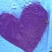 the little purple love spider