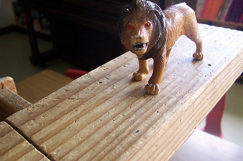 toy lion on wooden block