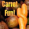 Carrot Fun s