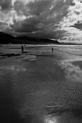 Playa de Vega II