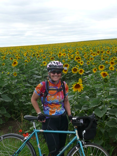 Lynne among the sunflowers