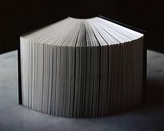 Photo book (fmahia) Tags: book photo bordeaux 4x5 chambre provia livre largeformat viewcamera fmahia
