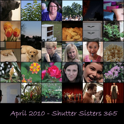 April Shutter Sisters 365 Mosaic-1