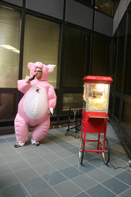 Pig and popcorn
