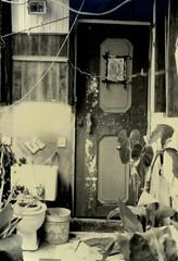 bienvenidos (David E. Merino) Tags: favela choza pobreza tugurio chabola fabela chamizu tugurios