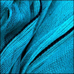 Net (tina negus) Tags: abstract net turquoise lincolnshire rubbish buildingsite 2b grantham dreamjournal 35faves 25faves dissymetry wowiekazowie diamondclassphotographer flickrdiamond exploreunexplored colourartaward ishkolorkraft coolestphotographers zenenlightenmentgroup