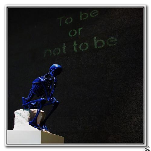 Frase celebre de Shakespeare: Ser o no ser
