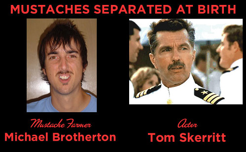Mustaches Separated at Birth FOUR