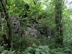 Duchal Castle
