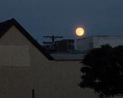IMG_0043_moon (parlance) Tags: california moon losangeles raw parlance canonpowershots90 canons90 fadedblurred3652010