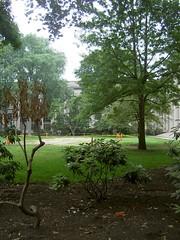 070620 damaged lawn (Dan4th) Tags: cambridge boston court ma mit killian 02139 massachusettsinstituteoftechnology