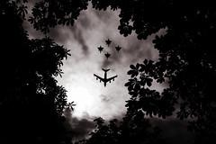 (Shemer) Tags: trees sky bw paris leaves silhouette clouds plane airplane nb 14juillet défilé aéroplane