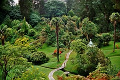 Powerscourt 3  Steven F Watson 2007 (WatscapePhoto) Tags: bridge trees ireland garden japanesegarden powerscourt coolest cowicklow holidaysvacanzeurlaub favoritegarden travelerphotos