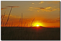 Palouse Sunset - by Roger Lynn