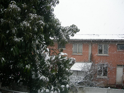 Snowing in Curicó