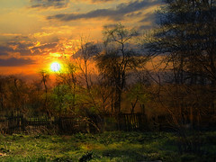 LANDSCAPE 5 (ghostdog 17) Tags: light fab tree nature topf25 forest photoshop sunrise fence dark landscape topf50 bravo explore romania chapeau soe themoulinrouge wonderworld blueribbonwinner splendiferous supershot magicdonkey 100faves top20colorpix golddragon abigfave artlibre platinumphoto anawesomeshot superaplus aplusphoto flickrplatinum superbmasterpiece goldenphotographer megashot theunforgettablepictures overtheexcellence platinumheartaward allnicethink photoshoproyalty theperfectphotographer filcroworld thegardenofzen theroadtoheaven thegoldendreams tup2 world100f fdream theenchantedcarousel