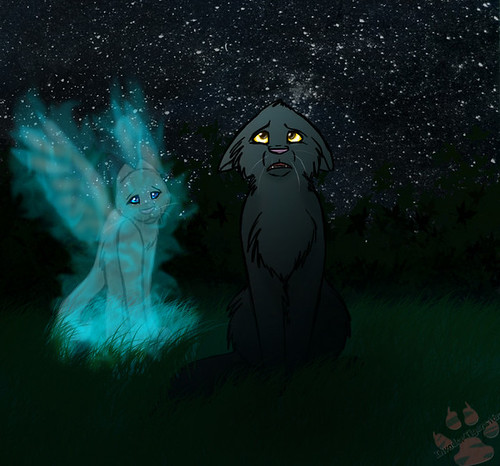 Welcome all Warrior cats! Here we live in peace with eachother and live by