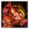 Fetus world (krandolph) Tags: sphere fetus photoshoproyalty