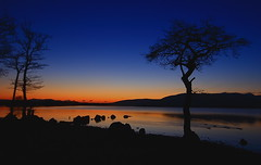 Millarochy Sunset (Liam Levitz) Tags: blue light sunset shadow fab sky orange black colour tree beach silhouette yellow canon landscape scotland stones ducks sunsets burning lochlomond otw millarochy rebelxti canon400 millarochybay theunforgettablepictures wouldlikeanewcameraactually veryprettylandscapeactually wasbloodycoldthough