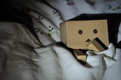 Ssshhh! (d-kaur) Tags: toys japanese cardboard yotsuba japanesetoys danboard danboardrevoltechyotsuba