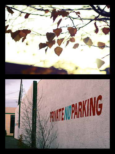 Fall and parking