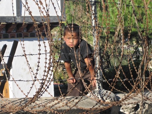 boy behind razor wire