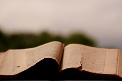 Saadi's Bostan (HAMED MASOUMI) Tags: old canon book persian poem iran superb group persia poet iranian hamed masterpiece bostan 30d saadi حامد ا masoumi hamedmasoumi معصومی حامدمعصومی
