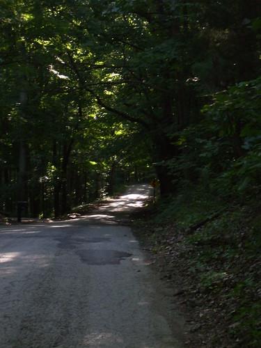 Shilo Road