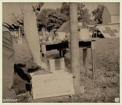 """Washing Up - 1944"" (photo_secessionist) Tags: bw 120 film kitchen sepia rollei rolleiflex hospital mediumformat soldier blackwhite retro ww2 hp5 aged ilford kp fakevintage oldstandard gettysburgpennsylvania eisenhowerfarmnhs"