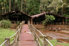 Bridge to the Spice Plantation