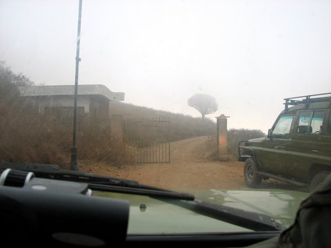 entering the Ngorongoro Conservation Area 230707 You can see how misty it is