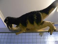 Dinosaur on shower