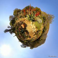 Botanical Garden (Stereographic) (Martin_Heigan) Tags: world africa camera sky panorama digital garden landscape botanical succulent aloe globe nikon martin stitch d70 earth surrealism south wide surreal sunny 360 fisheye photograph sphere planet polar dslr hdr vfx spherical supervisor hdri rockery hyperbolic stereographic tinyplanet 105mmf28g heigan anawesomeshot diamondclassphotographer flickrdiamond megashot naturewatcher wsnbg mhsetsucculents mhsetaloes mhsetlandscapes mhsetflowers mheigangallery