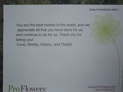 Mother's Day 102