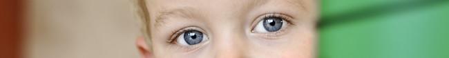 nilses ögon