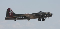 Texas Raiders (Bill Jacomet) Tags: texas airshow b17 bomber warbird warplane raiders tora b17g wingsoverhouston texasraiders ellingtonfield